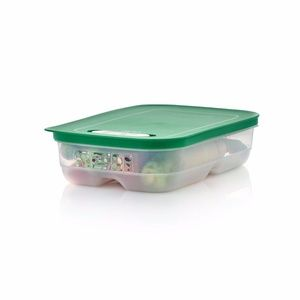 Tupperware Fridgesmart Medium